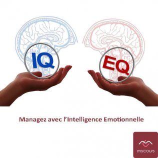 Manager avec l'Intelligence Emotionnelle